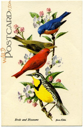 """Birds and Blossoms"" by Gene Klebe"