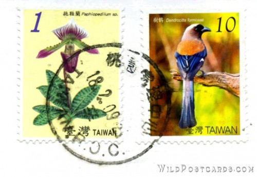 ching-shei-cliff-of-taroko-national-park-stamps