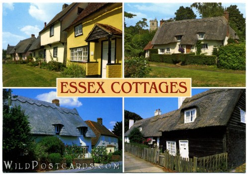 Essex Cottages