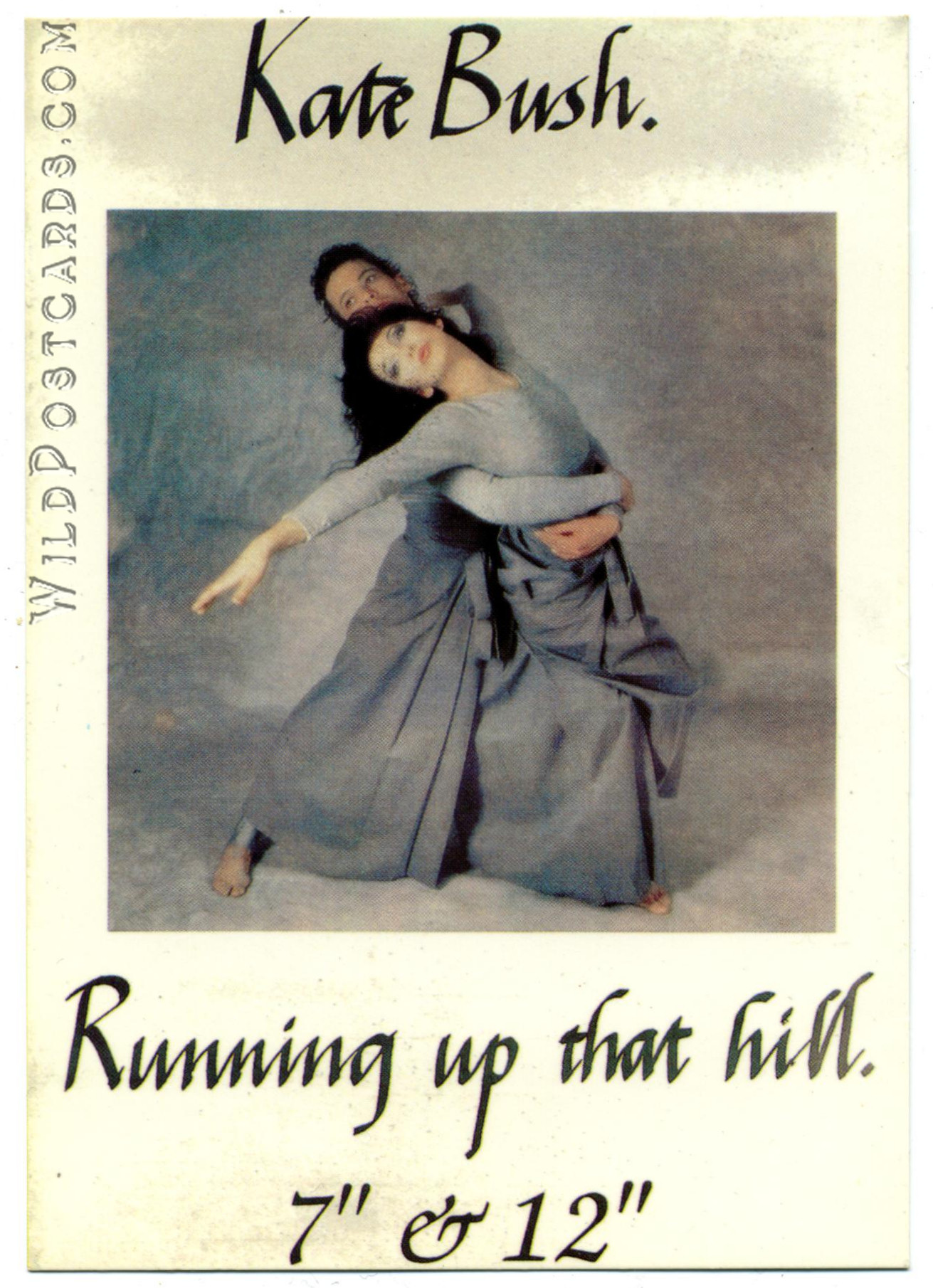 Kate Bush Running Up That Hill Wild Postcards