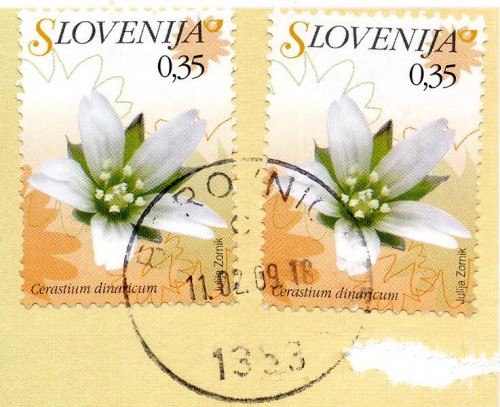 Slovenia Postage Stamps Featuring Dinaric Chickweed