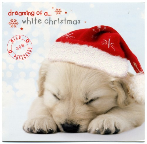 And may all your Milkbones be white