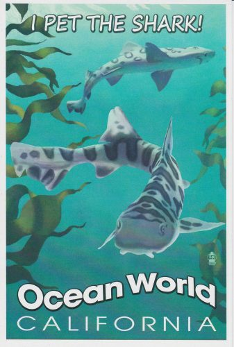 California: I Pet the Shark, Ocean World (Q08)
