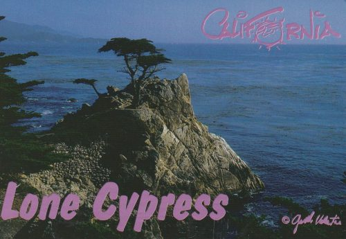 California: Lone Cypress (Q26)