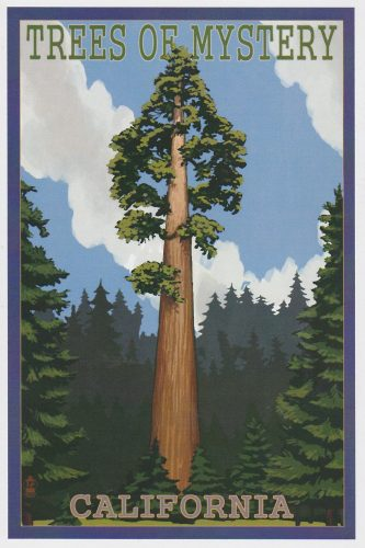 California: Trees of Mystery (Q03)