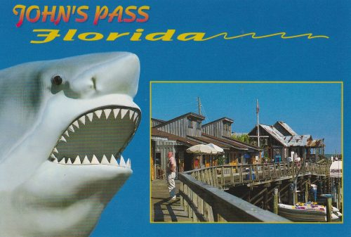 Florida: John's Pass Shark (R04)