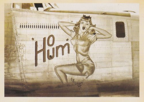 Ho Hum Nose Art (I27)