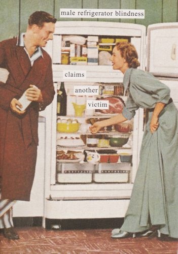 Male Refrigerator Blindness (Anne Taintor) (S14)