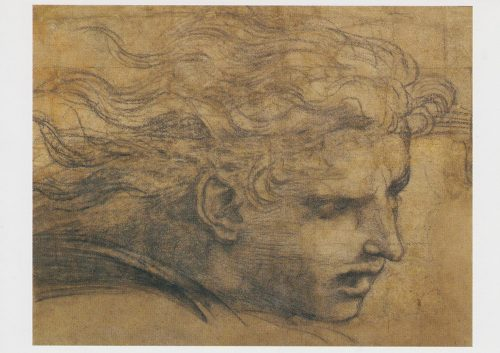 Raphael - Study of Heads of an Angel (J04)