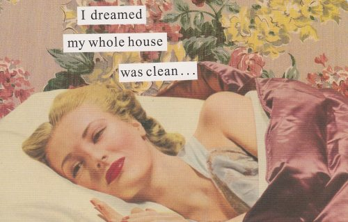Dreamed My House Was Clean  (Anne Taintor) (S09)